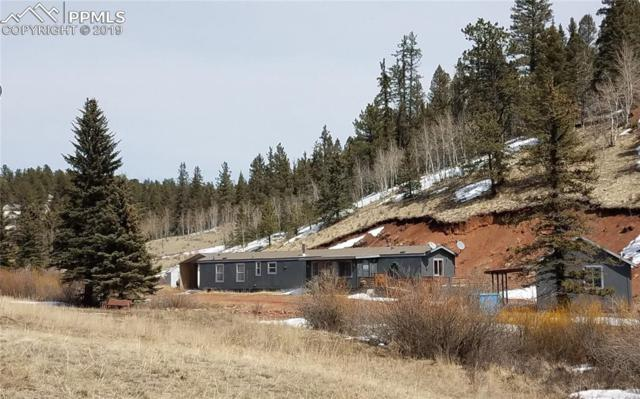 1770 Pathfinder Road, Florissant, CO 80816 (#6430782) :: Tommy Daly Home Team