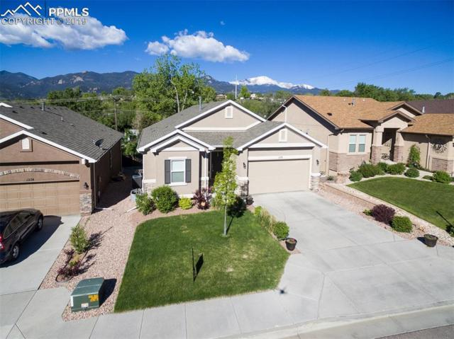 1278 Ethereal Circle, Colorado Springs, CO 80904 (#6451589) :: The Daniels Team