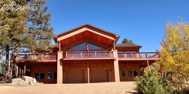 730 Trout Creek Drive, Divide, CO 80814 (#6455641) :: 8z Real Estate