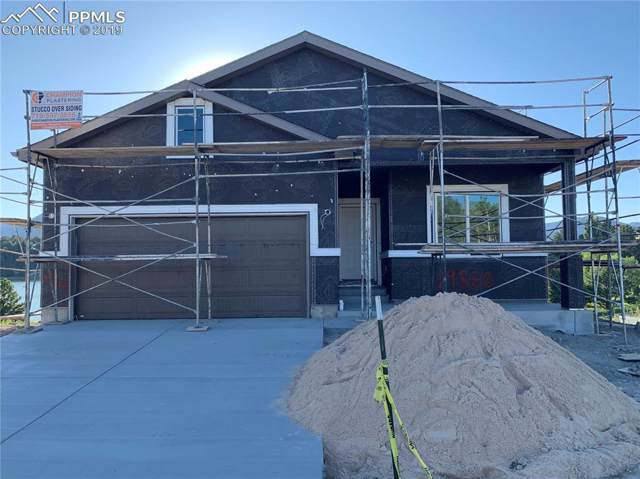 19860 Lake Vista Point, Monument, CO 80132 (#6639364) :: Tommy Daly Home Team