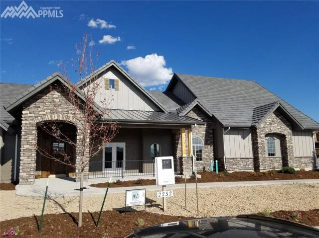 2252 Red Edge Heights, Colorado Springs, CO 80921 (#6847524) :: The Hunstiger Team