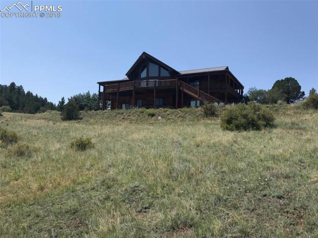 454 Cap Rock Lane, Canon City, CO 81212 (#7046431) :: 8z Real Estate