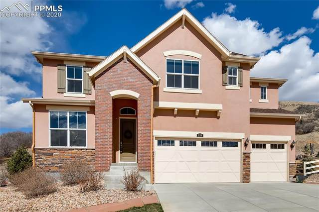859 Eveningsong Drive, Castle Rock, CO 80104 (#7114855) :: Tommy Daly Home Team