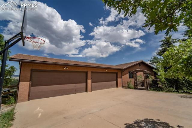 16495 Mount Herman Lane, Monument, CO 80132 (#7138629) :: Action Team Realty