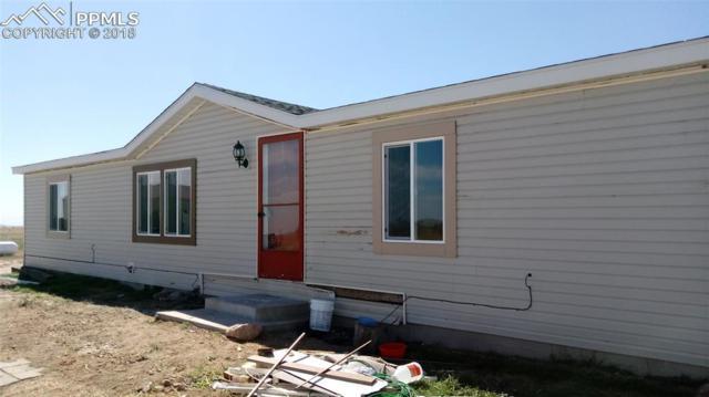 9775 Avenida Alegre Point, Fountain, CO 80817 (#7393597) :: Colorado Home Finder Realty