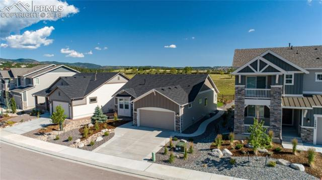 15811 Lake Mist Drive, Monument, CO 80132 (#7444409) :: The Kibler Group