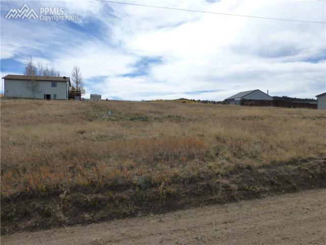 1486 Will Scarlet Drive, Divide, CO 80814 (#753223) :: 8z Real Estate