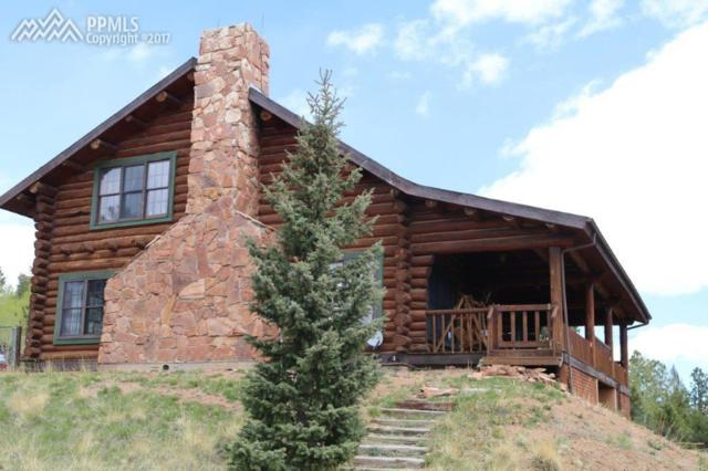 County Road, Victor, CO 80860 (#7617506) :: 8z Real Estate