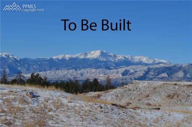 12810 Peregrine Way, Colorado Springs, CO 80908 (#7647957) :: 8z Real Estate