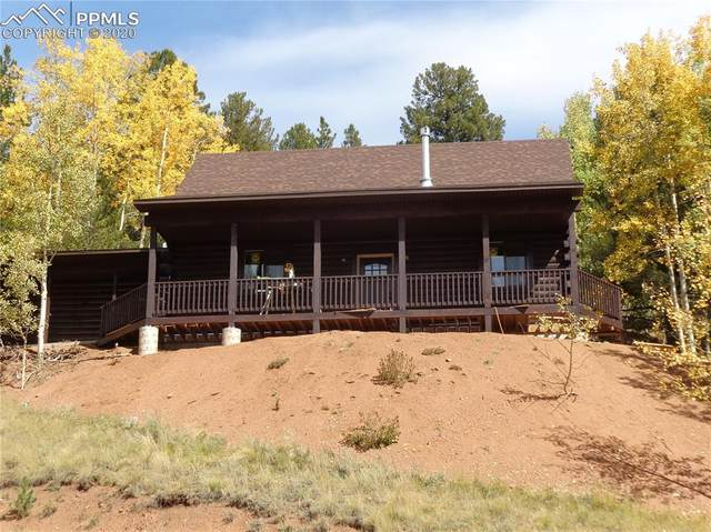 60 Beaver Pond Road, Divide, CO 80814 (#7827339) :: Action Team Realty