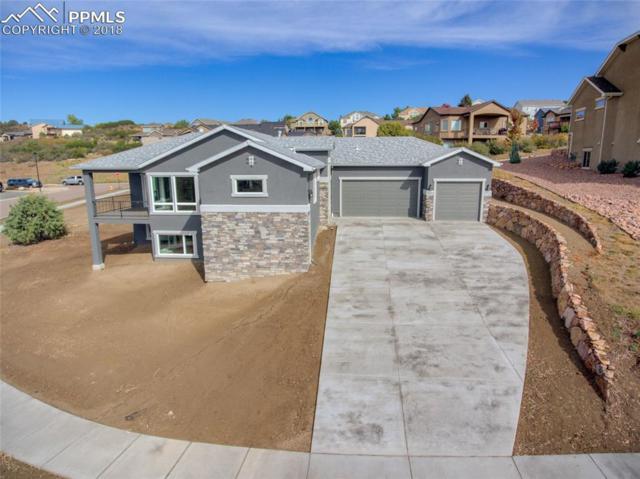 5571 Copper Drive, Colorado Springs, CO 80918 (#8053912) :: 8z Real Estate