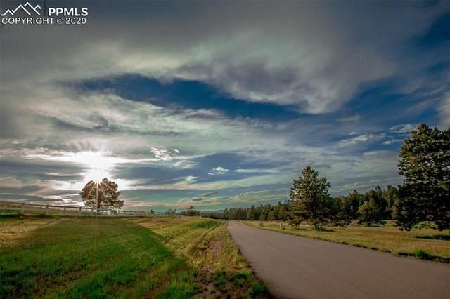 3303 Blue Heron Spring Lane, Colorado Springs, CO 80908 (#8069579) :: The Daniels Team