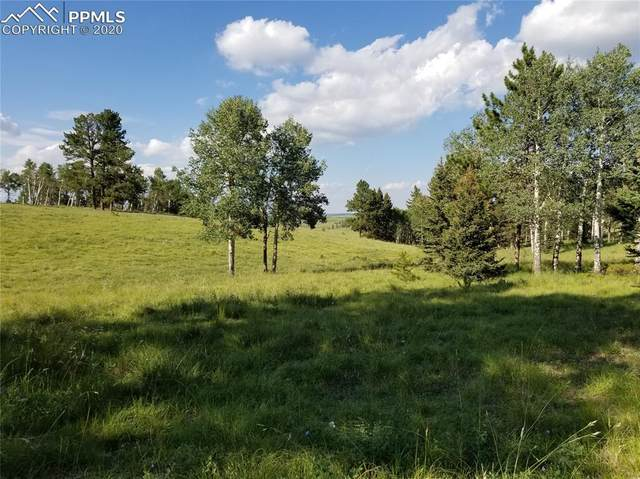 9615 W Highway 24 Highway, Divide, CO 80814 (#8158989) :: The Gold Medal Team with RE/MAX Properties, Inc