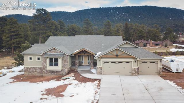 1225 Cottontail Trail, Woodland Park, CO 80863 (#8404864) :: Tommy Daly Home Team