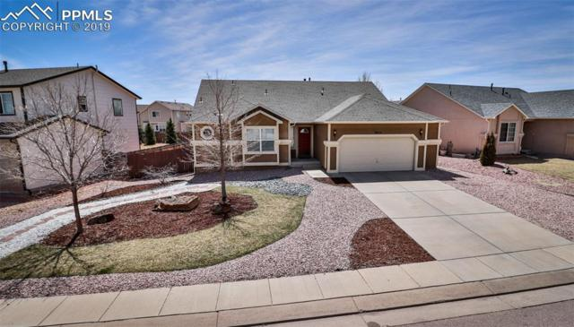 3654 Pronghorn Meadows Circle, Colorado Springs, CO 80922 (#8682406) :: Perfect Properties powered by HomeTrackR
