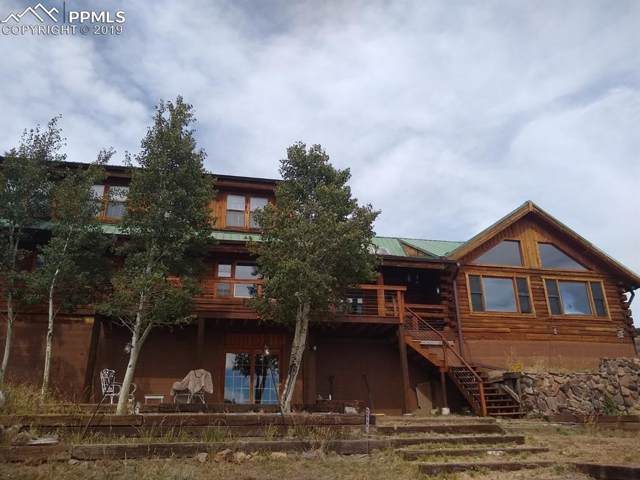 660 Wagon Wheel Road, Guffey, CO 80820 (#8708060) :: Colorado Home Finder Realty