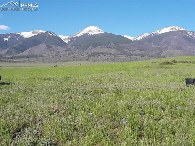 230 Running Bear, Cotopaxi, CO 81223 (#8847411) :: Jason Daniels & Associates at RE/MAX Millennium