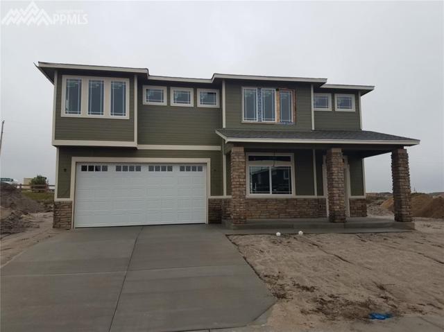 6521 Stonefly Drive, Colorado Springs, CO 80924 (#8958903) :: 8z Real Estate