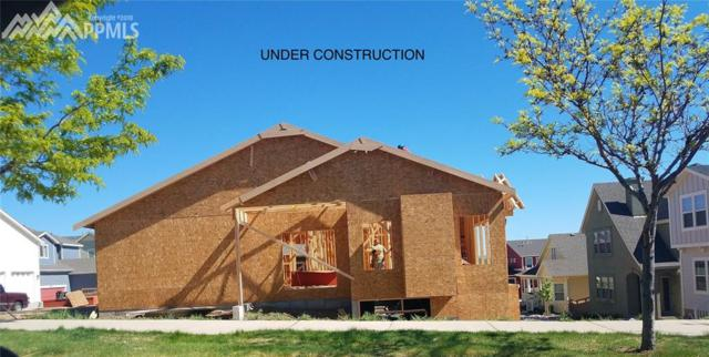 345 Eclipse Drive, Colorado Springs, CO 80905 (#9069832) :: Fisk Team, RE/MAX Properties, Inc.