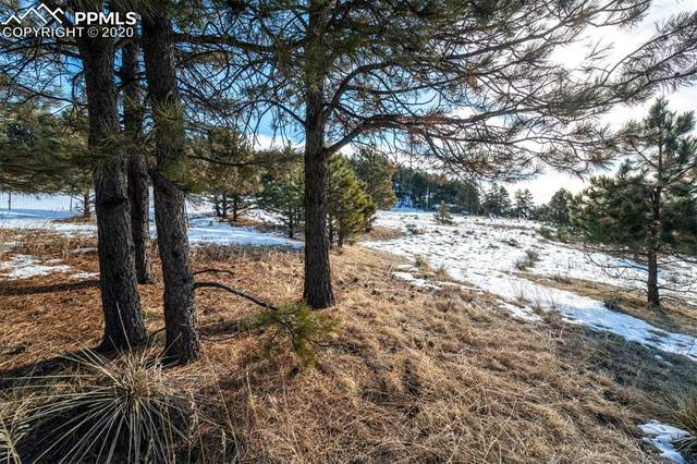 17250 Person Drive, Peyton, CO 80831 (#9174398) :: Action Team Realty