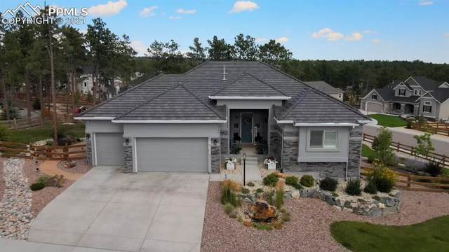 16225 Thunder Cat Way, Monument, CO 80132 (#9185974) :: The Gold Medal Team with RE/MAX Properties, Inc