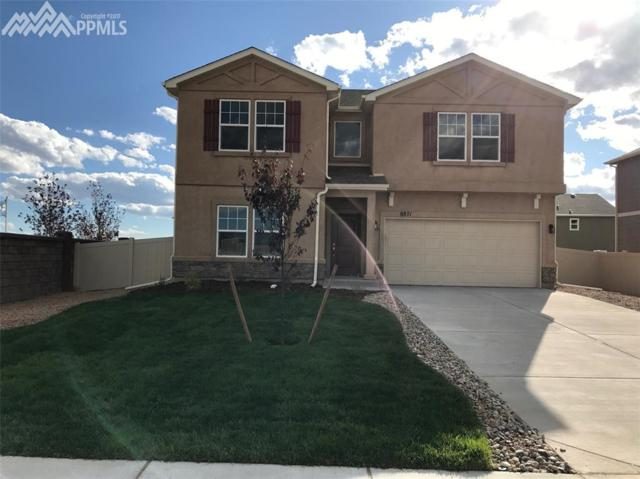 8871 Dry Needle Place, Colorado Springs, CO 80908 (#9273089) :: 8z Real Estate