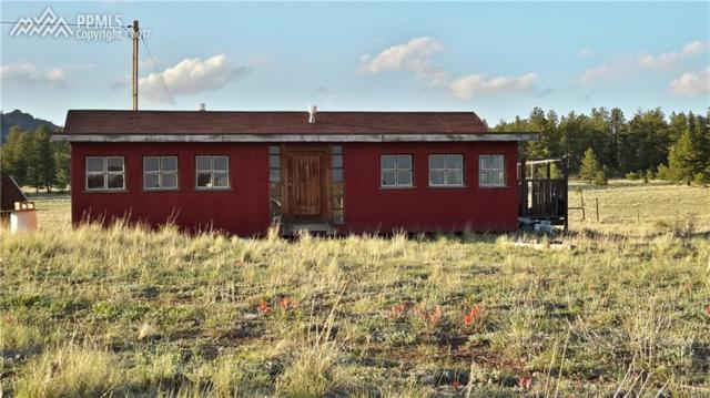 2470 Doe Valley Road, Guffey, CO 80820 (#9459412) :: The Treasure Davis Team