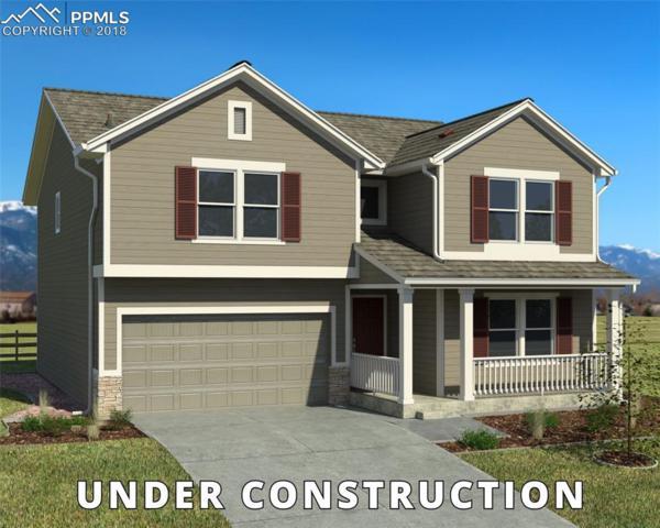 7251 Silver Moon Drive, Colorado Springs, CO 80923 (#9653672) :: Harling Real Estate
