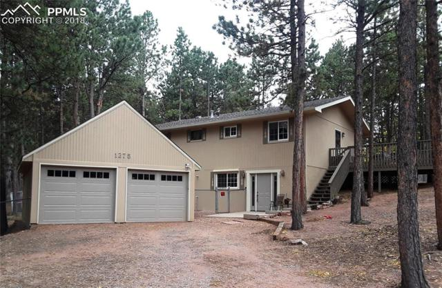 1275 Terri Lane, Woodland Park, CO 80863 (#9655170) :: The Daniels Team
