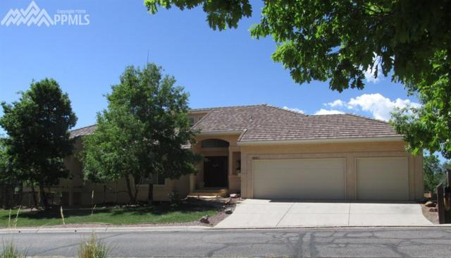 1685 Summit Point Court, Colorado Springs, CO 80919 (#9816543) :: 8z Real Estate
