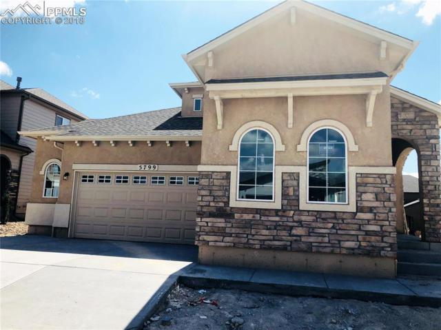 5799 Thurber Drive, Colorado Springs, CO 80924 (#9827952) :: Action Team Realty