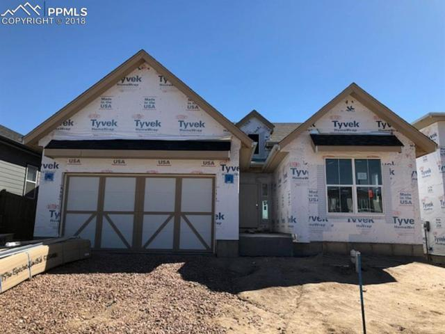 11596 Spectacular Bid Circle, Colorado Springs, CO 80921 (#1280986) :: Action Team Realty