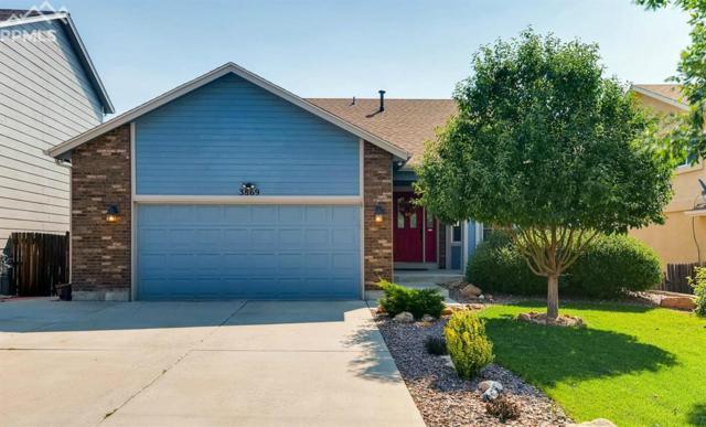 3869 Roan Drive, Colorado Springs, CO 80922 (#2043243) :: The Peak Properties Group