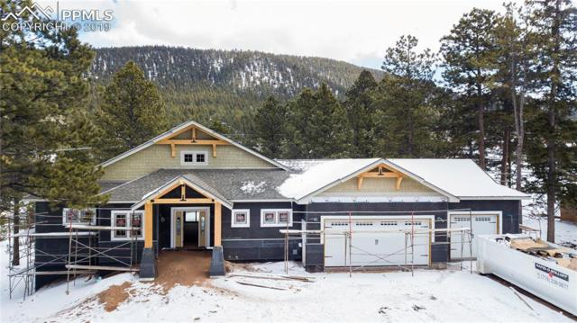 680 Chipmunk Drive, Woodland Park, CO 80863 (#2346836) :: Tommy Daly Home Team