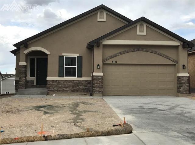 8141 Misty Moon Drive, Colorado Springs, CO 80924 (#3208147) :: 8z Real Estate