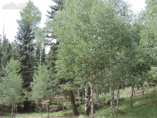 277 Aspen Circle, Divide, CO 80814 (#3591312) :: 8z Real Estate