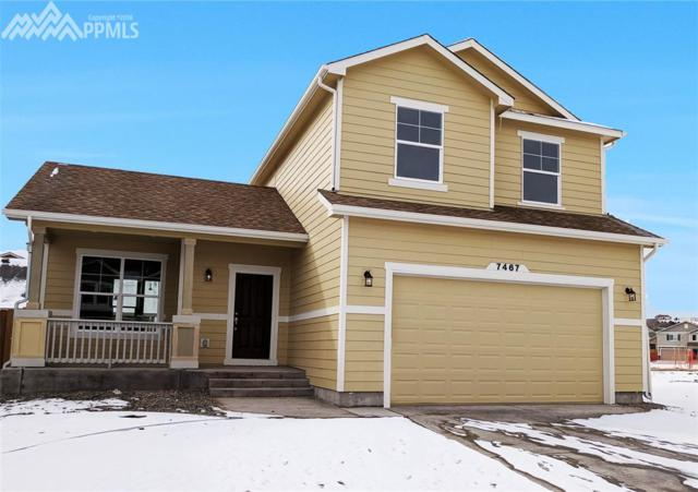 7467 Cat Tail Drive, Colorado Springs, CO 80923 (#3616116) :: RE/MAX Advantage