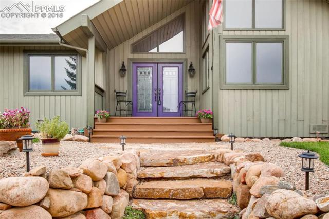180 Huntington Beach Drive, Colorado Springs, CO 80921 (#3645174) :: Jason Daniels & Associates at RE/MAX Millennium