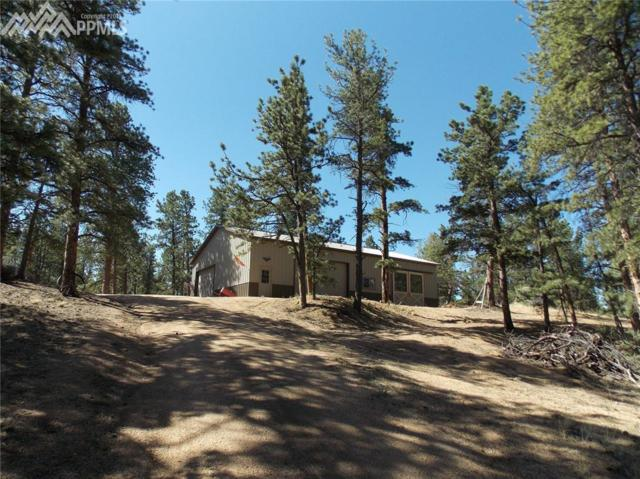 251 County 31 Road, Florissant, CO 80816 (#3716594) :: 8z Real Estate