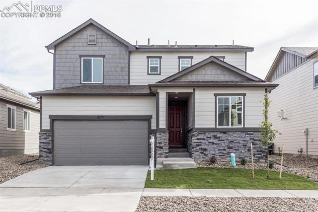 6175 Jorie Road, Colorado Springs, CO 80927 (#3868727) :: The Kibler Group