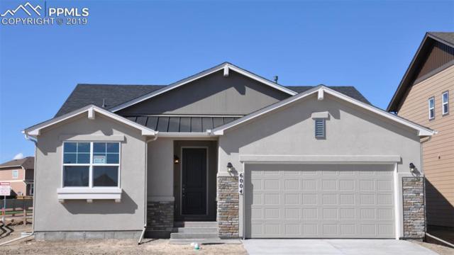 6004 Brennan Avenue, Colorado Springs, CO 80923 (#4179899) :: Action Team Realty