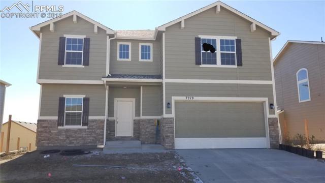 7219 Silver Moon Drive, Colorado Springs, CO 80923 (#4237622) :: 8z Real Estate