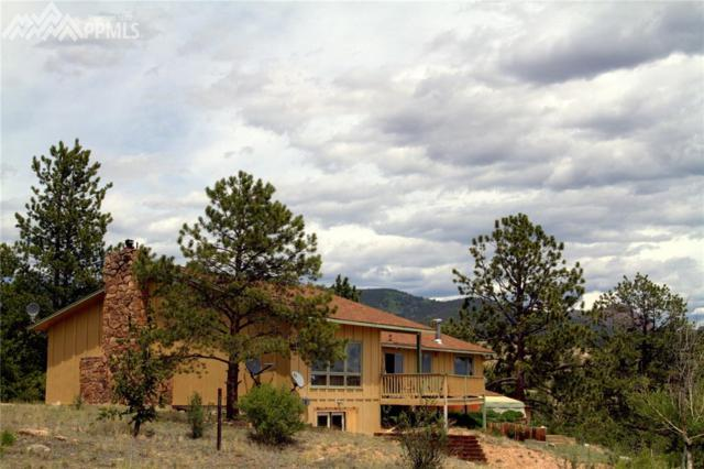 30893 County 77 Road, Lake George, CO 80827 (#4826195) :: 8z Real Estate