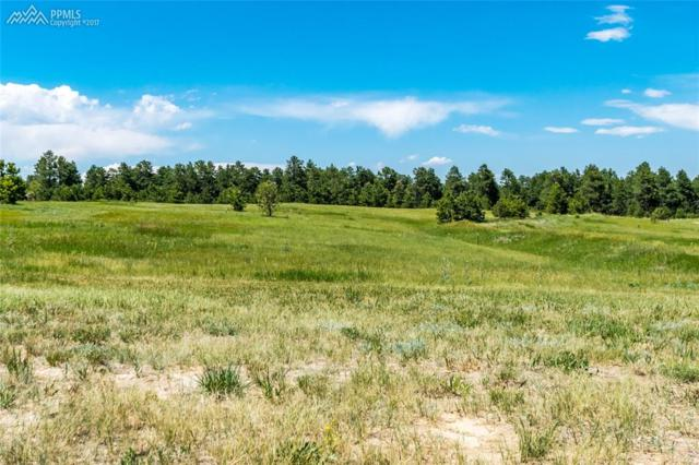 17275 Gwilym Court, Monument, CO 80132 (#4842982) :: 8z Real Estate