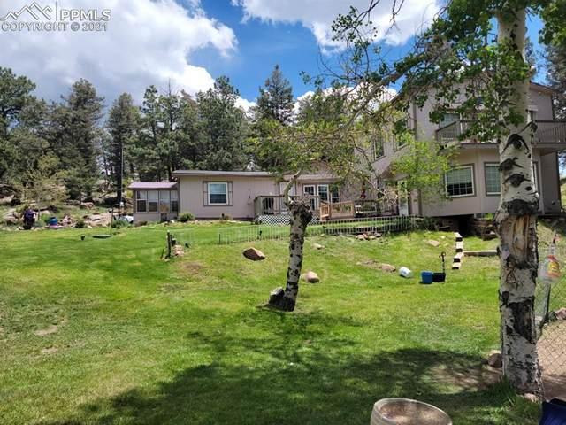 203 Apache Road, Florissant, CO 80816 (#5141117) :: Re/Max Structure