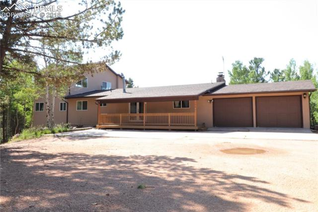 144 Skyline Lane, Woodland Park, CO 80863 (#5207163) :: 8z Real Estate