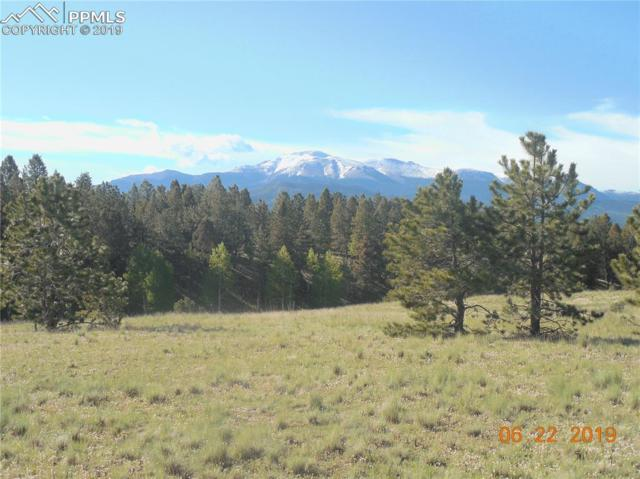TBD 1 County 51 Road, Divide, CO 80814 (#5568523) :: The Kibler Group