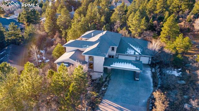 443 Darlington Way, Colorado Springs, CO 80906 (#7103988) :: Venterra Real Estate LLC
