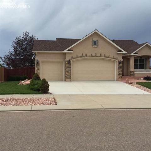 6388 Butch Cassidy Boulevard, Colorado Springs, CO 80923 (#7479689) :: 8z Real Estate