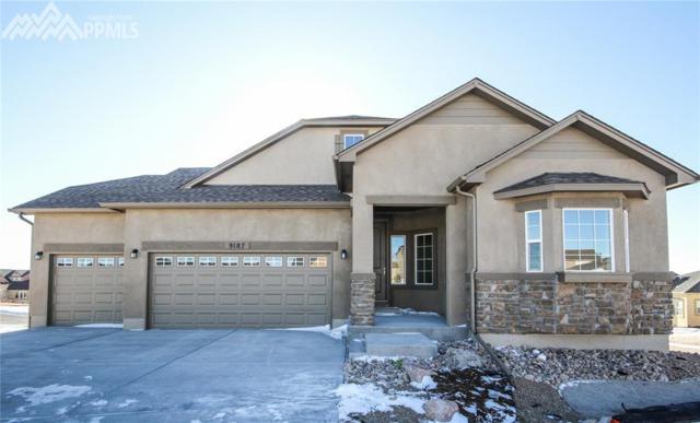 9187 Jasper Falls Place, Colorado Springs, CO 80924 (#7670803) :: 8z Real Estate